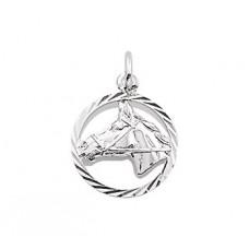 Zilveren Bedel paardenhoofd